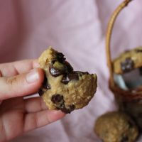 Healthy Peanut-Butter Chocolate Chip Cookies (Gluten Free, Vegan) | The Joyful Pantry