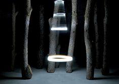 Markus Schroll - Anatomia des Waldes (Anatomy of the wood) Interactive Installation, Light Installation, Casa Wabi, Bühnen Design, Graphic Design, Independence Day Background, Multimedia, Light Trails, Forest Art