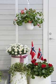 17. mai nærmer seg med stormskritt. Da er det mange som ønsker å plante og pynte ferdig uteplassen. Vi gir deg tips til hvordan du kan pynte med blomster ute til den store nasjonaldagen. 17. Mai, Constitution Day, Flower Petals, Flowers, Christmas Table Settings, Happy B Day, White Candles, Green Life, Front Yard Landscaping