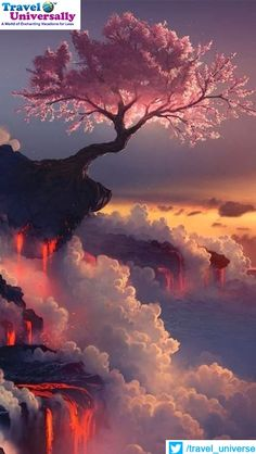 #weeklytravelguide #beautyofnature Cherry blossom tree at the Fuji volcano A Place where The softness and the harsh environmental conditions can be seen in symbiosis with Each Other. It's Mount Fuji Volcano Mount Fuji is Japan's highest mountain and the focal point of the sprawling Fuji-Hakone-Izu National Park. Visible from Tokyo on a clear day, the mountain is located to the west of Tokyo on the main island Honshu.