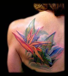 Birds of Paradise Exotic Flower | Aaron Goolsby : Tattoos : Nature : Hummingbird and Bird of Paradise ...