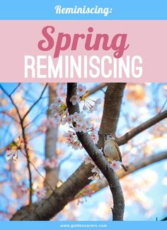 Spring reminiscing activity for seniors. After months indoors, encourage residents to breathe-in and enjoy the fresh air of spring!