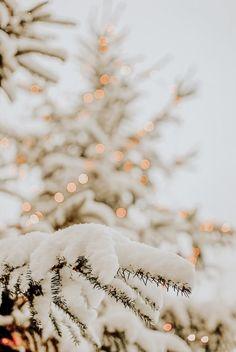 Snow, Christmas lights on Christmas tree, winter wallpaper, Christmas wallpaper, party & Wallpaper Natal, Christmas Phone Wallpaper, Christmas Aesthetic Wallpaper, Holiday Wallpaper, Aesthetic Iphone Wallpaper, Aesthetic Wallpapers, Snow Wallpaper Iphone, Fall Wallpaper, Room Wallpaper