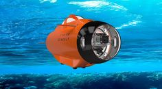 The TTR-SB Seawolf takes your GoPro on an underwater ride!