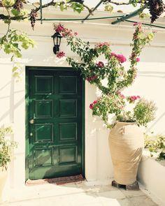 Flowers - Mediterranean Home Decor