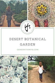 Photo feature of the Desert Botanical Garden in Phoenix, Arizona #desertbotanicalgarden - Generation Ys Blog