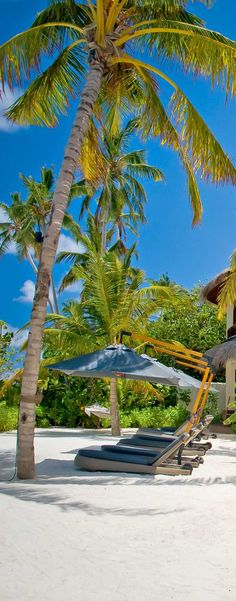 5 Affordable All Inclusive Beach Resorts