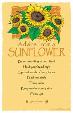 "Advice from a Sunflower: ""Keep on the sunny side."""