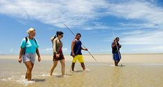 Learn about Indigenous and Torres Strait Islander culture through one of the many tours available in Cairns. Daintree Rainforest, Cairns, Things To Do, Tropical, Tours, Australia, Culture, Adventure, World