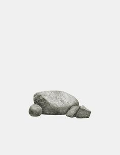 Jürgen Bergbauer's simple and elegant photographic series 'Studien nach der Natur'