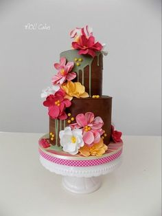 Colours and ganache  by MOLI Cakes