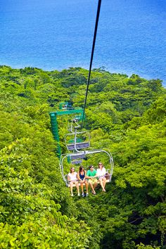 Rainforest Sky Explorer in #Jamaica