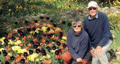 Senderos de lirios y tulipanes | Comunidad Valenciana | EL PAÍS