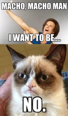 Grumpy Cat - Richard Simmons (by Nancy WB)