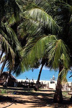 Beach at Arugam Bay, Sri Lanka
