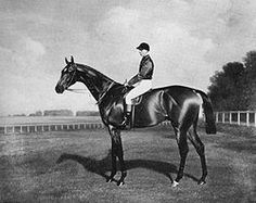 Diamond Jubilee(1897)(Colt)St Simon- Perdita II By Hampton. 16 Starts 6 Wins 4 Seconds ! Third. Became 9th England's Triple Crown Winner In 1900 After Winning 2000 G.uineas, Epsom Derby, & St Leger. Also Won Newmarket S, Eclipse S. Leading Sire In Argentina In 1915,1916, 1917 & 1921. Died In 1923.