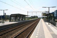 Dichtbij Zonnetuin vindt u het NS station Apeldoorn Osseveld. Vanaf dit station rijdt er twee keer per uur een trein richting Deventer en Enschede. Zo hoeft u niet eerst naar Apeldoorn Centraal om met de trein te reizen!