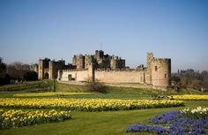 The great castles of England have played an important role in the economic, military, and social development of the nation. For centuries, these grand structures have graced Great Britain with their imposing stone features and large aristocratic and royal estates. Let's look at them in more detail, and list the best 20… Many of the …