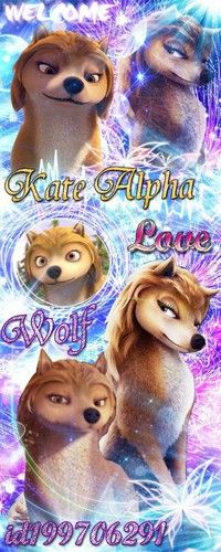 Kate the alpha wolf