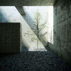 Promenade architecture -Tadao Ando (1941), Japanese #LandscapingArchitecture