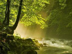 http://pozitiv-news.ru/wp-content/uploads/2012/10/Raznotsvetnaya-planeta-5.jpg