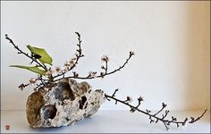 Ikebana by Baiko reflects the Zen Buddhist tendencies of minimalism and a spare poetry of nature