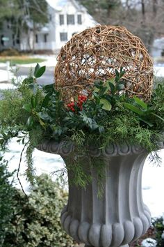 "Winter urns - holly, boxwood, cedar & blue spruce, 12"" grapevine spheres w/ lights. (white lights w/ brown wires)"