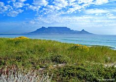 Visiting the stunning natural locales of Cape Town, South Africa during the country's rugby World Cup campaign on a trip of unexpected discoveries. Cape Town South Africa, Table Mountain, Gap Year, Study Abroad, Earth, Landscape, Country, World, Places