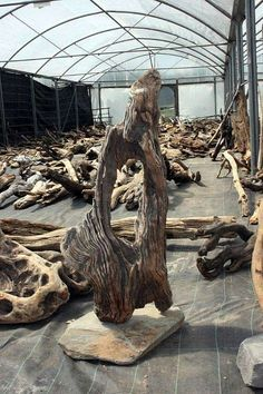 Surrey Driftwood for sale - Suppliers of Architectural Driftwood Sculptures Driftwood Furniture, Driftwood Lamp, Driftwood Projects, Driftwood Sculpture, Log Furniture, Driftwood For Sale, Creation Deco, Wood Creations, Wooden Art
