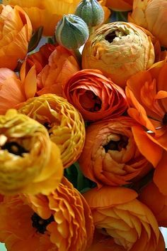 Big bunches of colorful Ranunculus! Always a great idea for California parties.