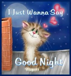 I just wanna say Good Night goodnight good night sweet dreams good night greeting good night friends and family good night graphics animated good night Good Night Greetings, Good Night Wishes, Good Night Sweet Dreams, Good Night Image, Good Morning Good Night, Nighty Night, Good Night Sleep Tight, Image Chat, Photo Chat