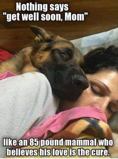 """Nothing says """"get well soon, Mom"""" like an 85-pound mammal who believes his love is the cure."""
