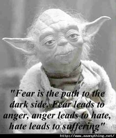 """Fear is the path to the dark side. Fear leads to anger, anger leads to hate, hate leads to suffering."""