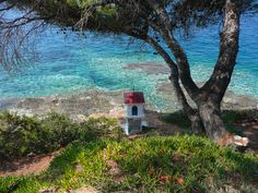 Halkidiki - I don't know where this is but i don't think i'd care. Eternal Love, Outdoor Activities, Daydream, Greece, Images, Destinations, To Go, Wanderlust, Around The Worlds
