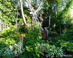 bohemisk trädgård - Sök på Google