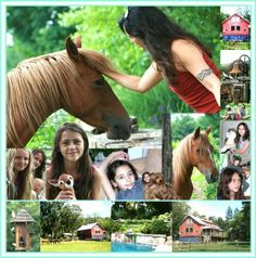 The Spirit Horse Farm Family Collage - MCM Design