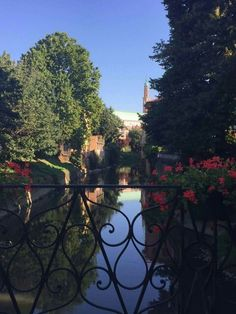 Vicenza ❤