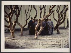Michel Delaborde, Chine, (groupe d'hommes et arbres) 1981-1982. © Ministère de la culture (France), Médiathèque de l'architecture et du patrimoine, Diffusion RMN-GP