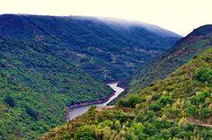 Ribeira Sacra - Galice - Espagne - 162 Canón do Sil