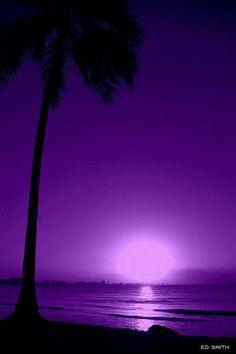 Purple Aesthetic Discover Pupura Puerto Rico by Edward Smith Purple Love, All Things Purple, Shades Of Purple, Deep Purple, Purple And Black, Purple Sunset, Purple Stuff, Purple Beach, Pink