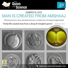 Quran and Science