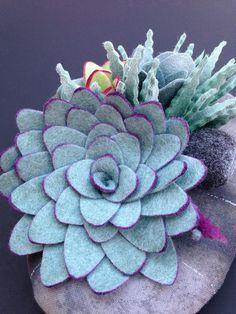 felt succulent plant No water no dirt no problem by miasole