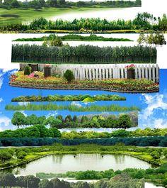 Artlantis-library: [Photoshop] Trees PSD on transparent layers