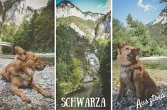 Séta+a+Schwarza-folyó+partján+(Ausztria)