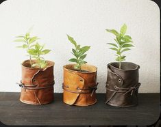 potted plants wrapped in leather, tied with string Leather Diy Crafts, Leather Gifts, Leather Projects, Leather Craft, Leather Accessories, Leather Jewelry, Deco Floral, Sewing Leather, Plant Holders