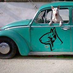 Naklejka Pies Ciekawski Bull Terrier
