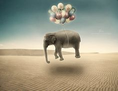35 Creative Surreal Photo Manipulations « Cuded – Showcase of Art ...
