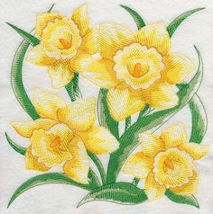 Sketched Daffodils at Embroidery Library dot com. Embroidery Flowers Pattern, Embroidery Applique, Flower Patterns, Machine Embroidery Designs, Flower Designs, Sketch Design, Square Quilt, Daffodils, Needlework