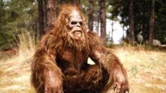 Video demostraría la existencia de Pie Grande. Una filmación amateur realizada por un grupo de turistas habría captado al famoso monstruo. Mirá las imágenes en www.diariopopular.com.ar/c164447