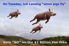 """Vote """"NO"""" on Tuesday! Tell Gov. Snyder and the Legislators to do their jobs. No More Taxes! PLEASE SHARE!"""